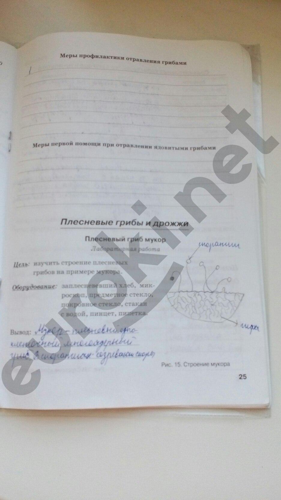 ГДЗ по биологии 5 класс рабочая тетрадь Бодрова. Задание: стр. 25