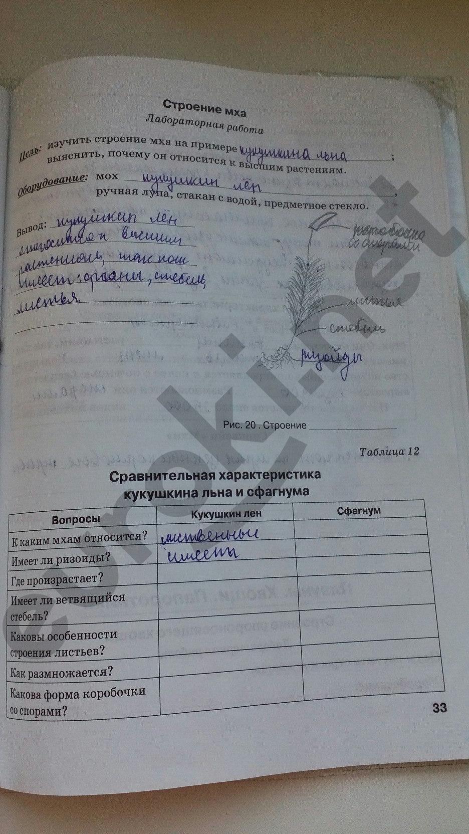 ГДЗ по биологии 5 класс рабочая тетрадь Бодрова. Задание: стр. 33