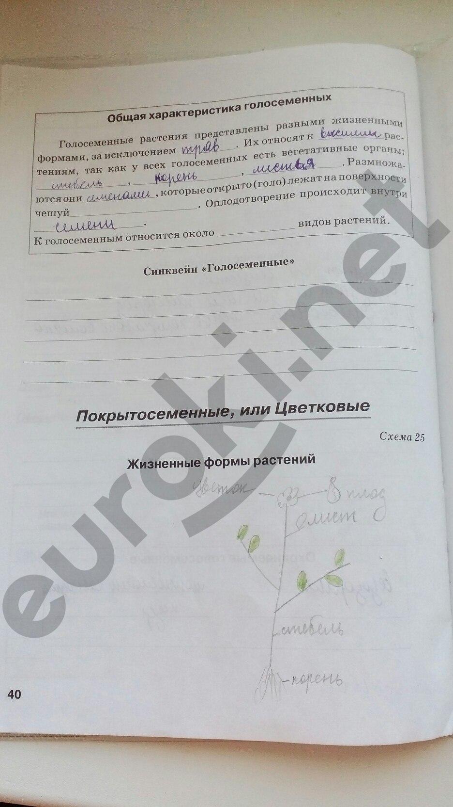 ГДЗ по биологии 5 класс рабочая тетрадь Бодрова. Задание: стр. 40