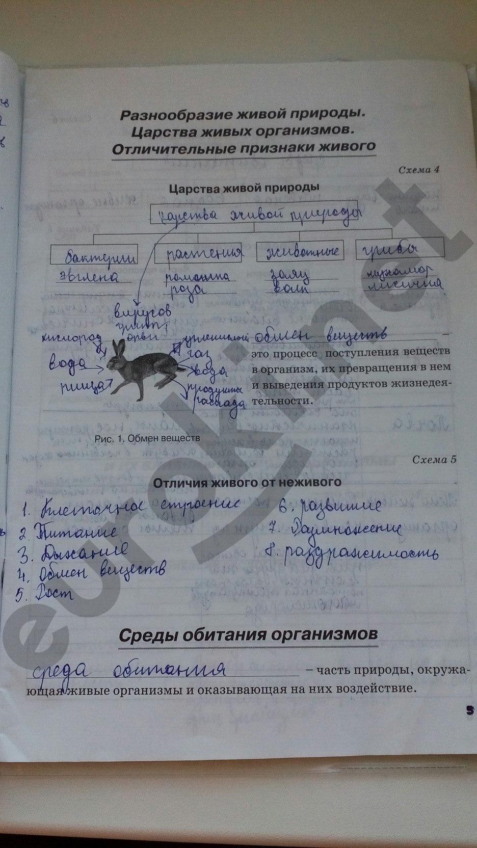 ГДЗ по биологии 5 класс рабочая тетрадь Бодрова. Задание: стр. 5