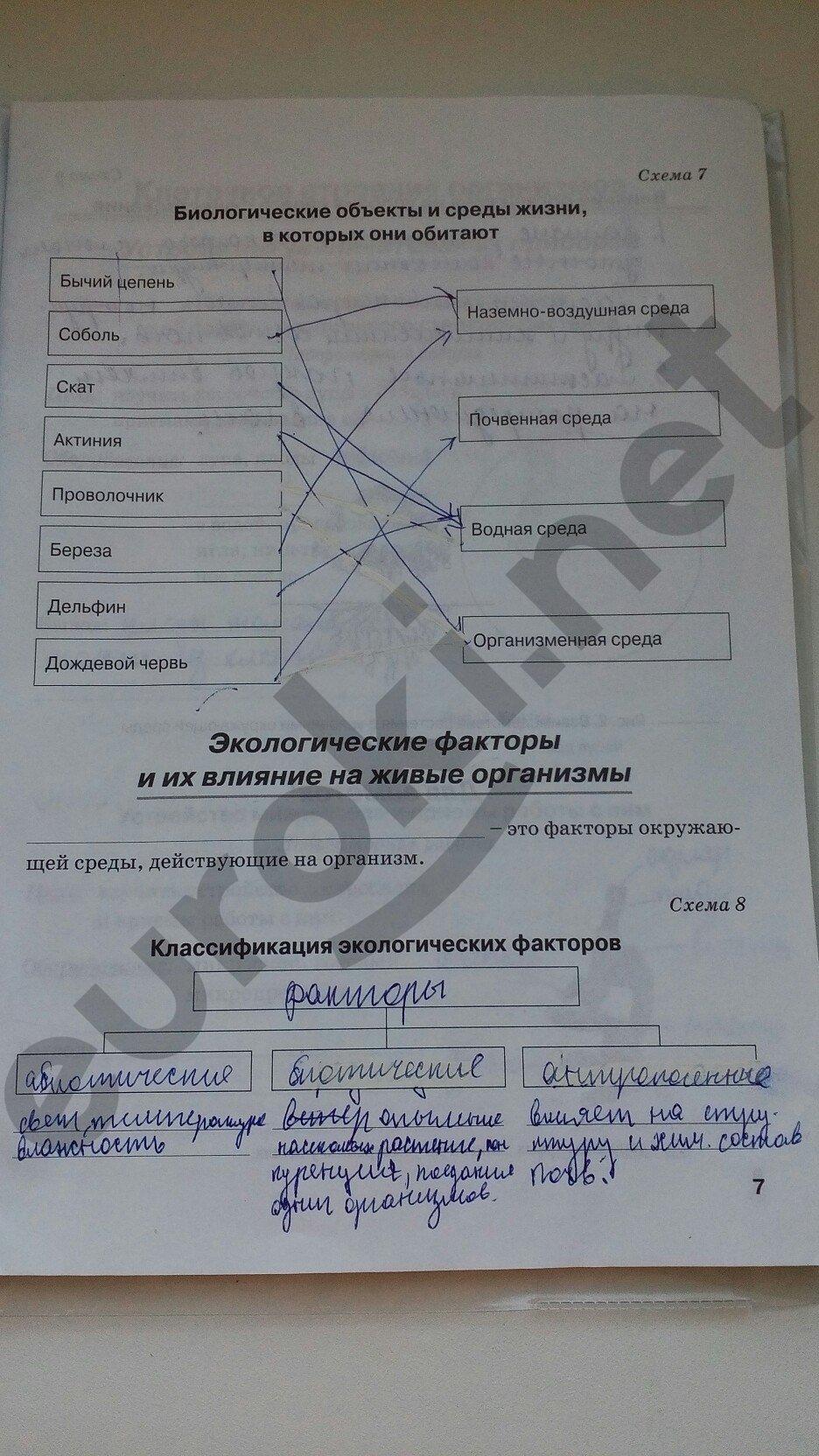 ГДЗ по биологии 5 класс рабочая тетрадь Бодрова. Задание: стр. 7