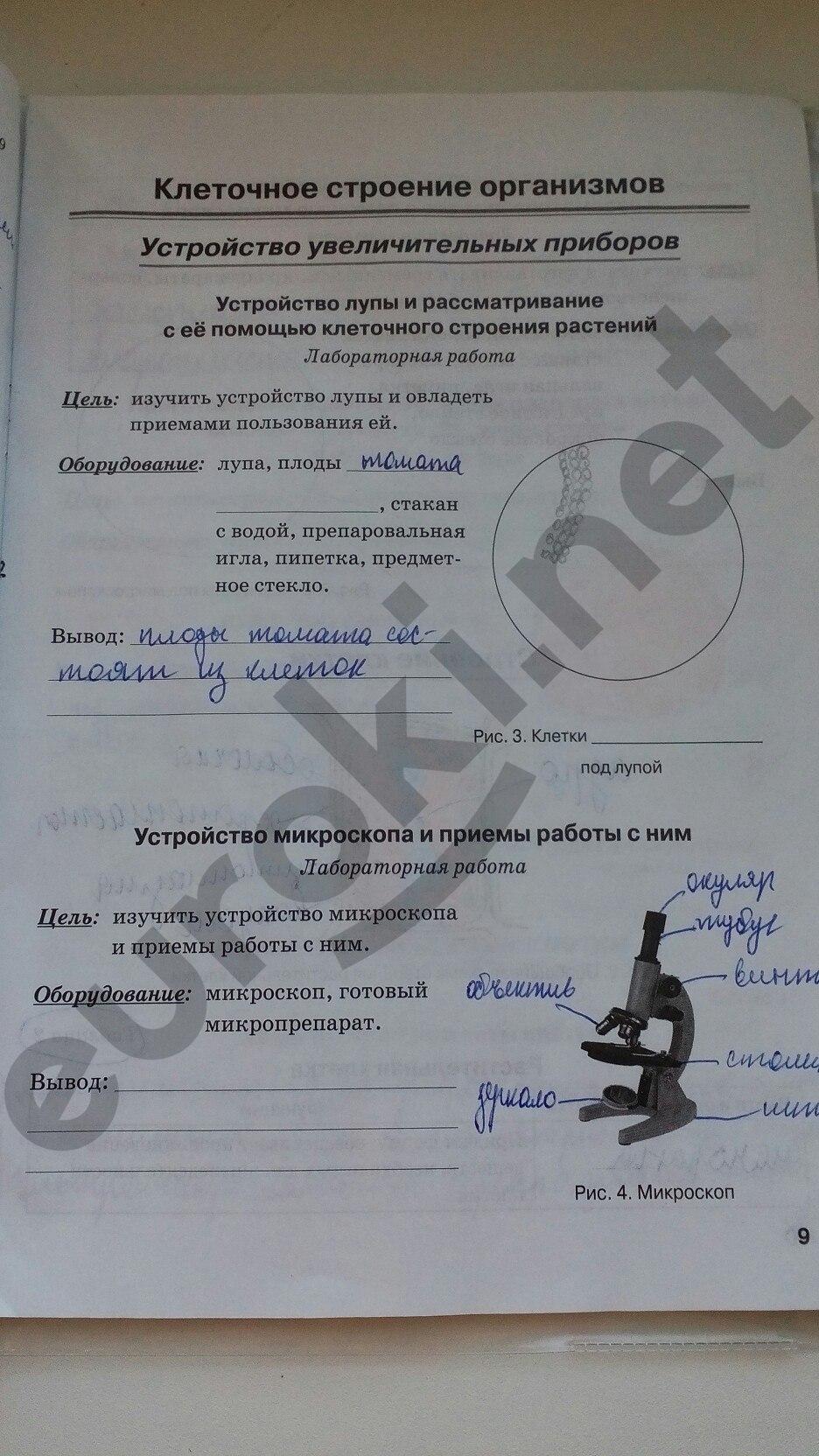 ГДЗ по биологии 5 класс рабочая тетрадь Бодрова. Задание: стр. 9